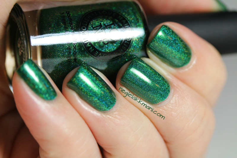 ILNP A Fresh Evergreen